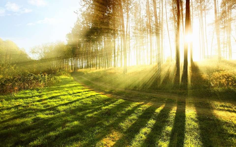 Sonnenschutzmittel - Pixabay